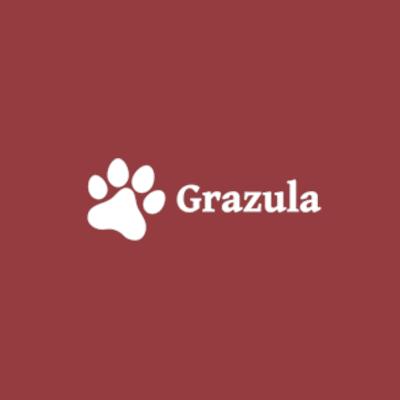 Hodowla Grazula: Owczarek Szetlandzki, Kot Rosyjski Niebieski